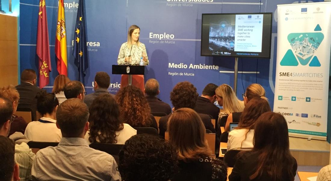 CEEIM-smart-cities-SME4SMARTCITIES-2019